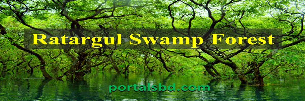 Ratargul Swamp Forest Sylhet – The Freshwater Swamp Forest in Bangladesh