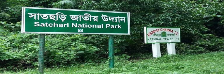 Satchari National Park