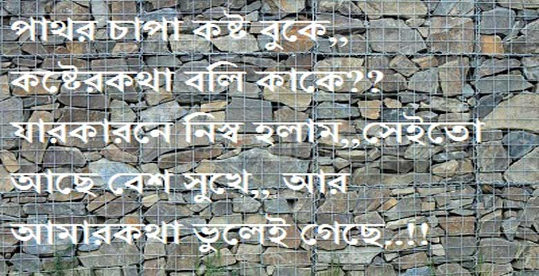 bengali shayari photo pictu